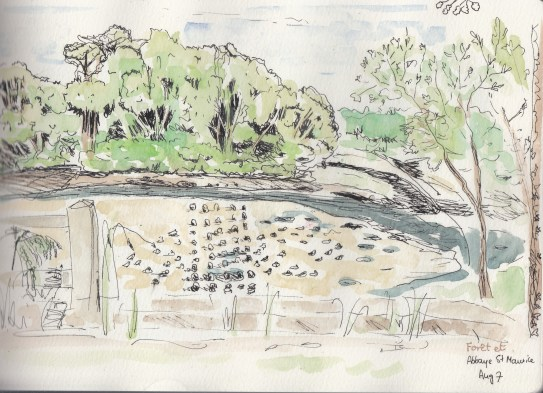Aug7_watercolor_Foret St Maurice