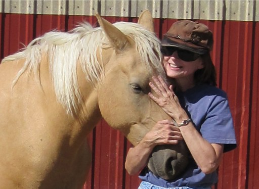 finding home author ginny mcdonald