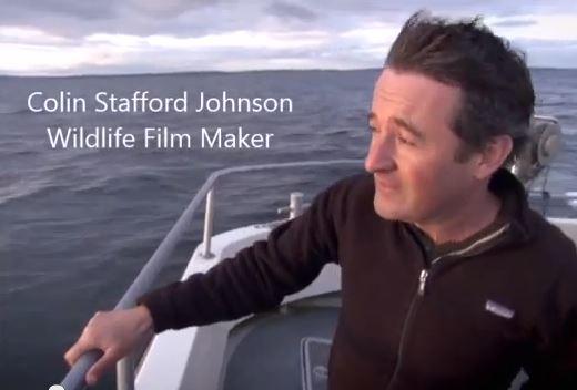 Colin Stafford-Johnson