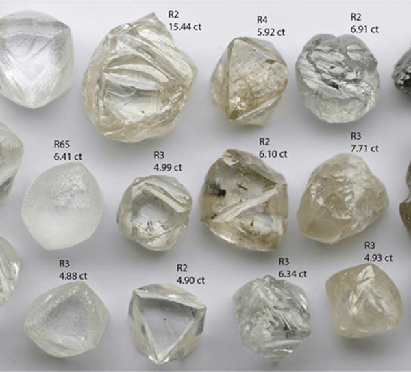 Rough Diamond Grading & Evaluation Course