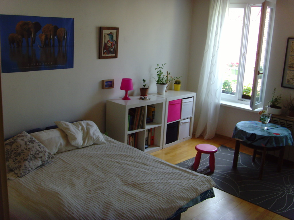 Das Beste One Room Apartment In The Very Centre Of Graz Next To Tu In Diesem Monat