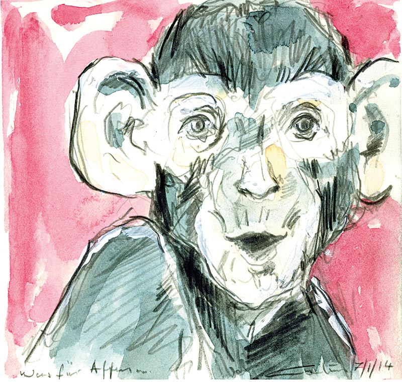 Was für Affen