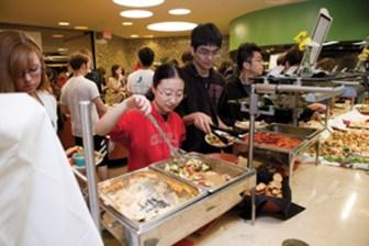 Photo courtesy of cornell.edu