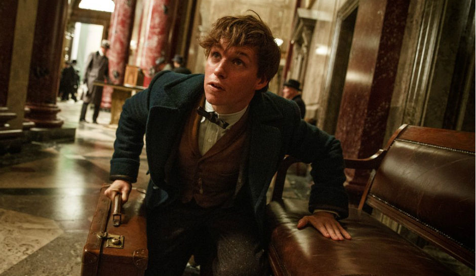 fantastic-beasts-and-where-to-find-them-movie-still