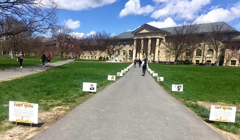 More than half of the 34 signs were swiped, members of the Tibet Initiative at Cornell said in a recent interview, emphasizing a campus divide on Chinese policy.