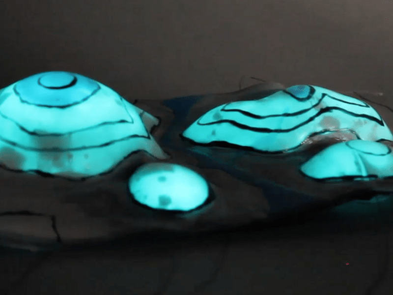 Stretchable surfaces with programmable 3D texture morphing for synthetic camouflaging skins.