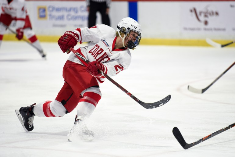 On Friday, the women's hockey team took the first game in a best-of-three series against Princeton for the ECAC quarterfinals. (Boris Tsang/Sun Staff Photographer)