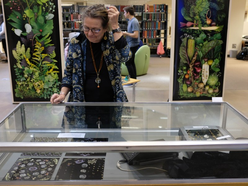 """Mann Library Gallery's """"A Sweep of Light"""" exhibit involves the use of scanner photography to create colorful plant aftwork."""