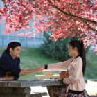 Noah Centineo and Lana Condor in To All The Boys I've Loved Before.
