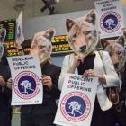 "Painted with ""Wear your own skin!"" students protested Canada Goose's use of live-plucked down and its method of procuring coyote fur and other furs in general."