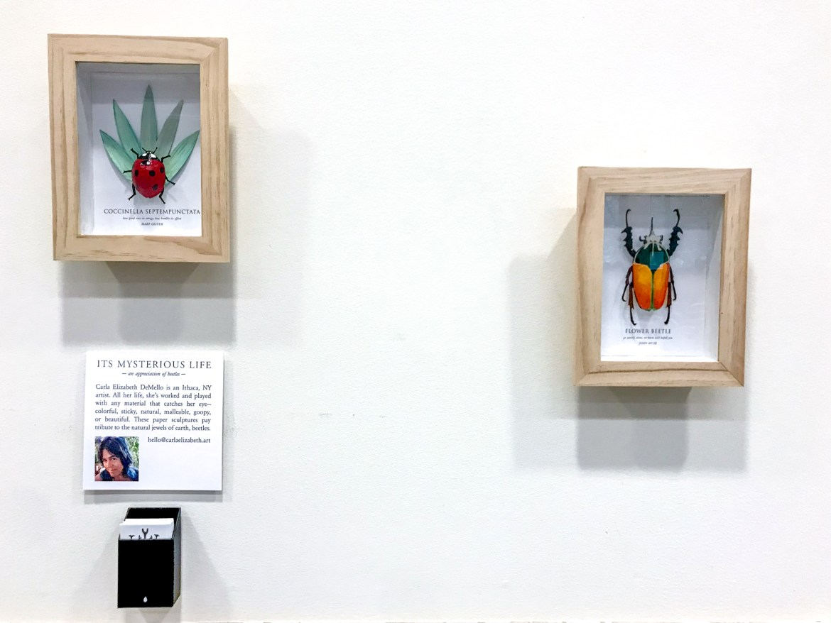 Its Mysterious Life: An Appreciation of Beetles will be on display at Mann Library from Nov. 2 to Jan. 31, 2019.