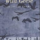 page 7 arts geese cover