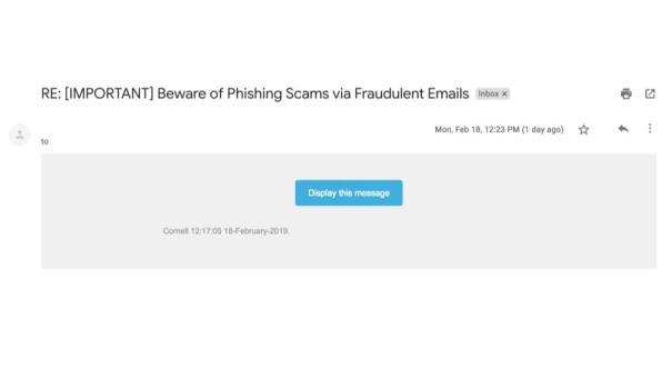 A screenshot taken of the phishing email.