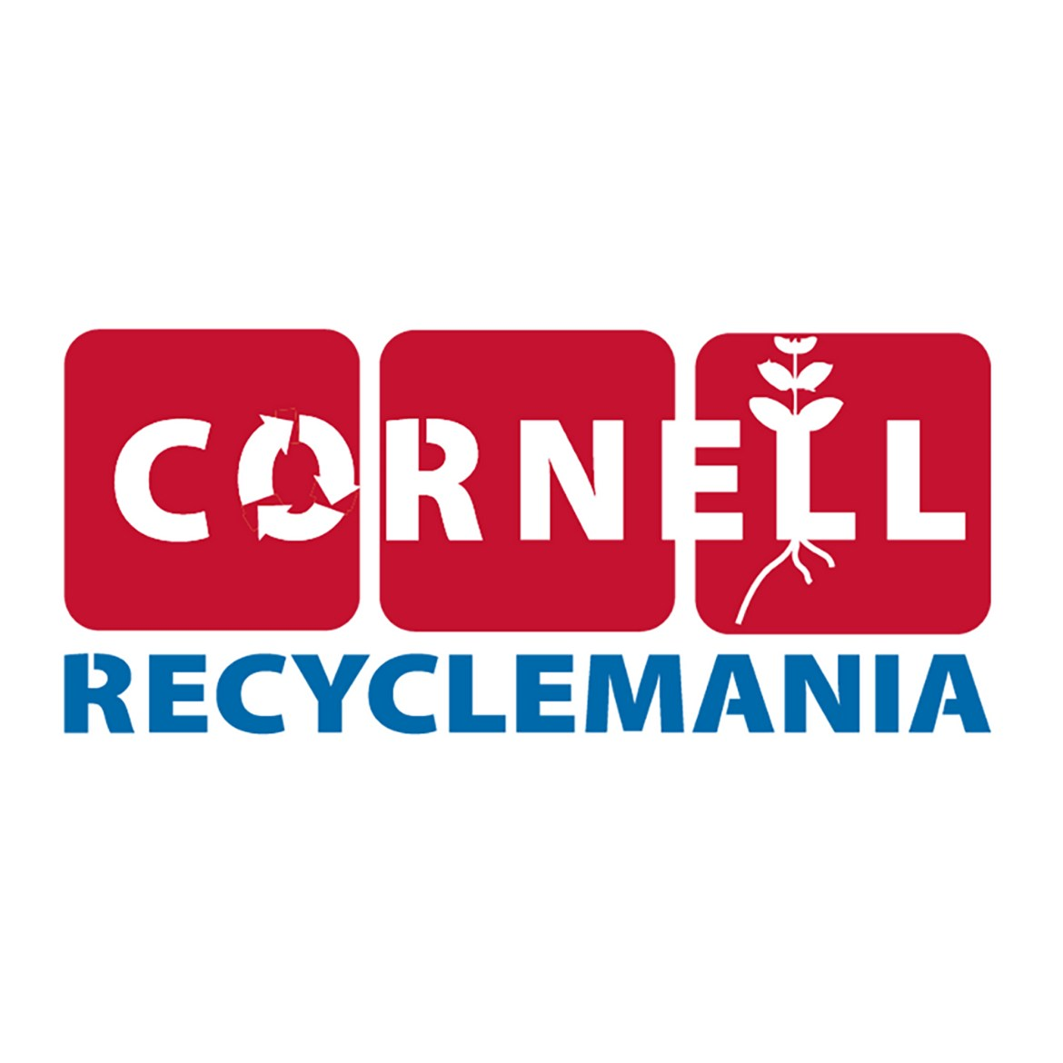 Cornell participates in the sustainability competition for the 10th time.