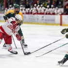 Women's hockey v. Clarkson on December 1st, 2018. (Boris Tsang / Sun Assistant Photography Editor)