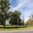 Stewart Park will have two new trees planted on May 3rd in celebration of Arbor Day.