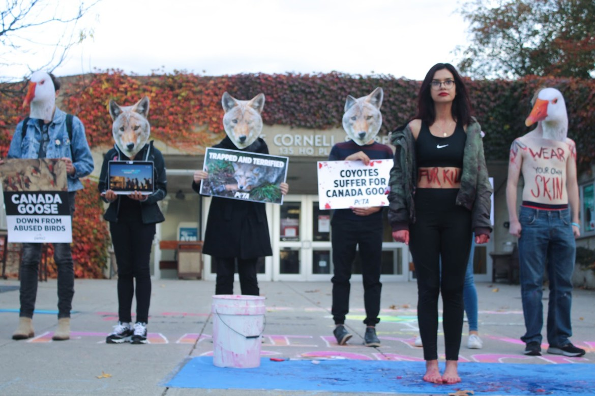 The Cornell Vegan Society demonstrated on Ho Plaza to bring awareness to the animal cruelty involved in producing Canada Goose products.