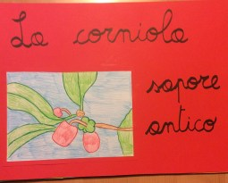 concorso-corniola-scuola-spagnago1