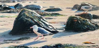 Cornish Gulls by Andrew Giddens