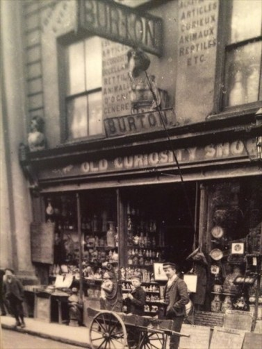burton's old curiosity shop