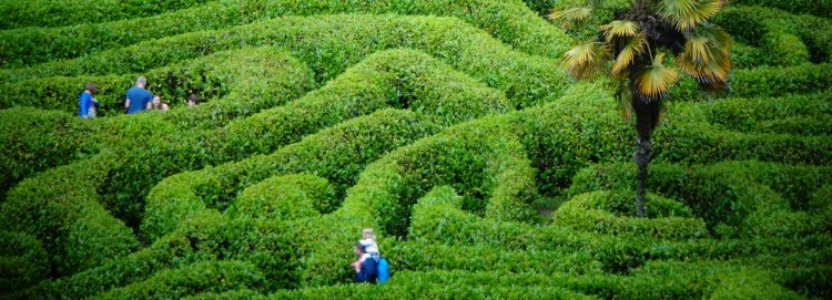 cornish mazes