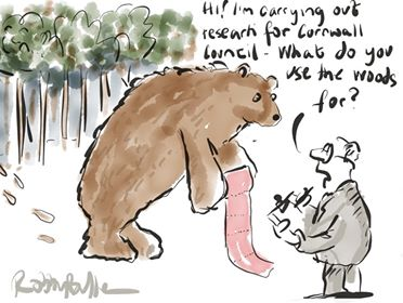 bears in wood rob bullen