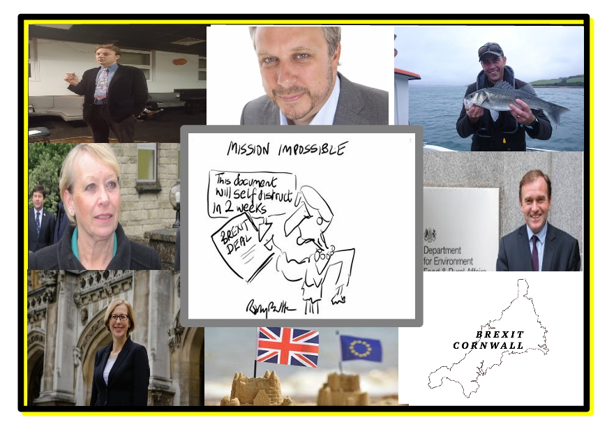 Cornwall and the Brexit Vote