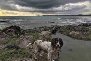 Three beaches - Boolies Beach
