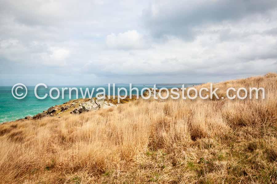 Grassland Foreground With Sea And Coastline