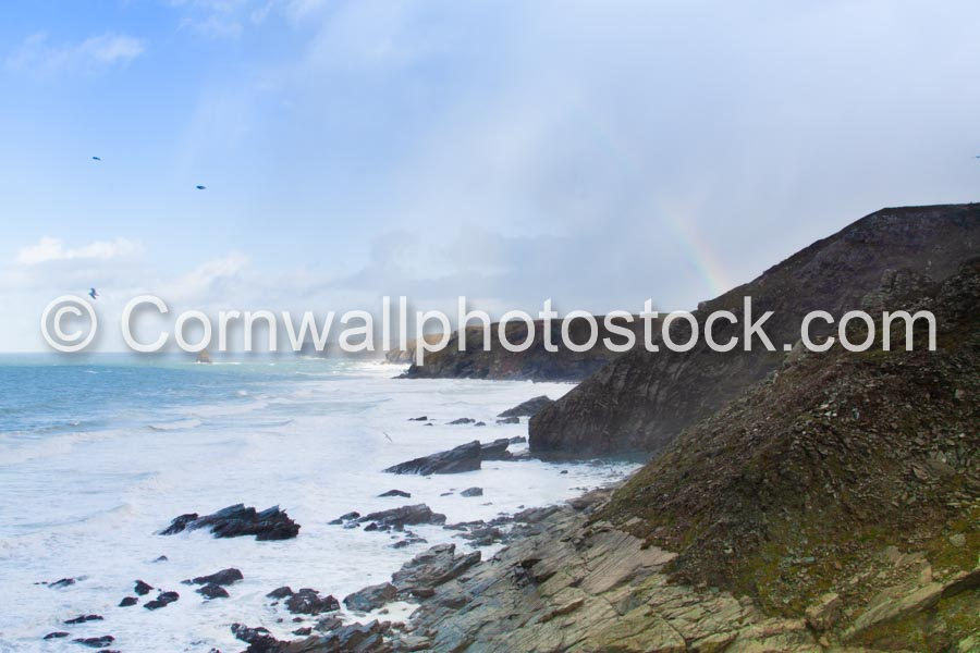 Gull Rock From The South With Rainbow