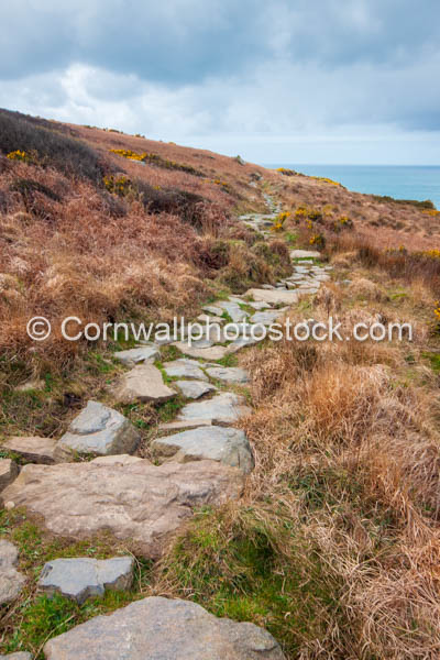 Rocky Path On South West Coast Path