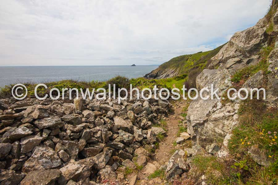 South West Coast Path With Foreground Rocky Pass