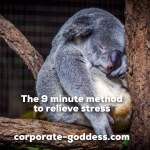 The 9 Minute Method to Relieve Stress