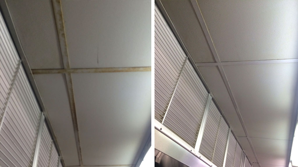 Ceiling Tile Cleaning Before & After in Grand Rapids