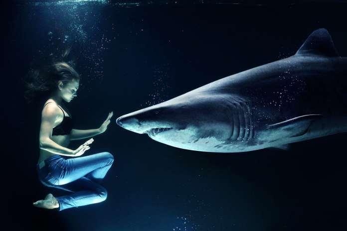 Femme sous l'eau avec un requin