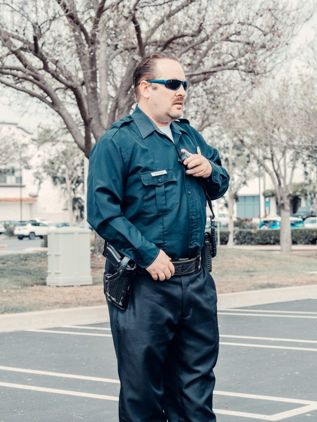 How Private Security Professionals Protect You?
