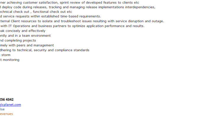 Application Support Developer