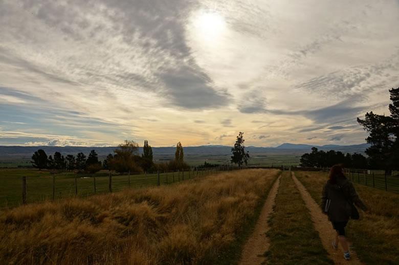 Maniototo near Waipiata - Stefan Lane