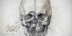 Leonardo da Vinci, skull