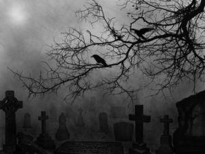 crows in graveyard