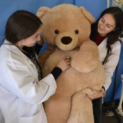 teddy bear hospital med students