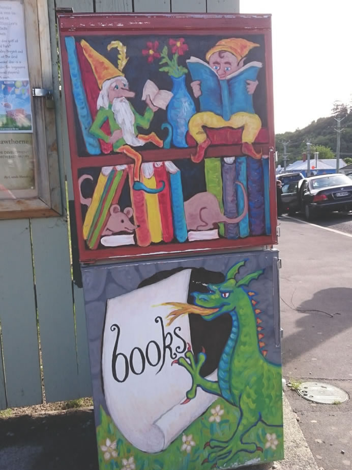 Lilliput Libraries-7