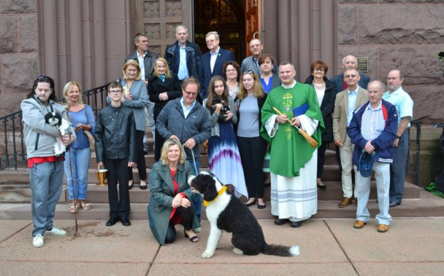 Blessing animals Sunday – October 7
