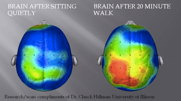 Working From Home Brain Study after walking