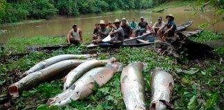 Pescadores recebem o produto da venda do pescado/Foto: Arquivo
