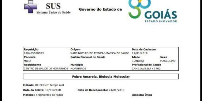 Resultados de exames para febre amarela são NEGATIVOS para macaco encontrado morto em Morrinhos