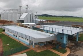 COMPLEM adquire área da CISAL no Distrito Agroindustrial de Morrinhos e mira crescimento inédito