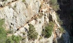 trail recorrido-16