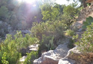 trail recorrido-20