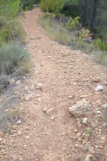 trail recorrido-7